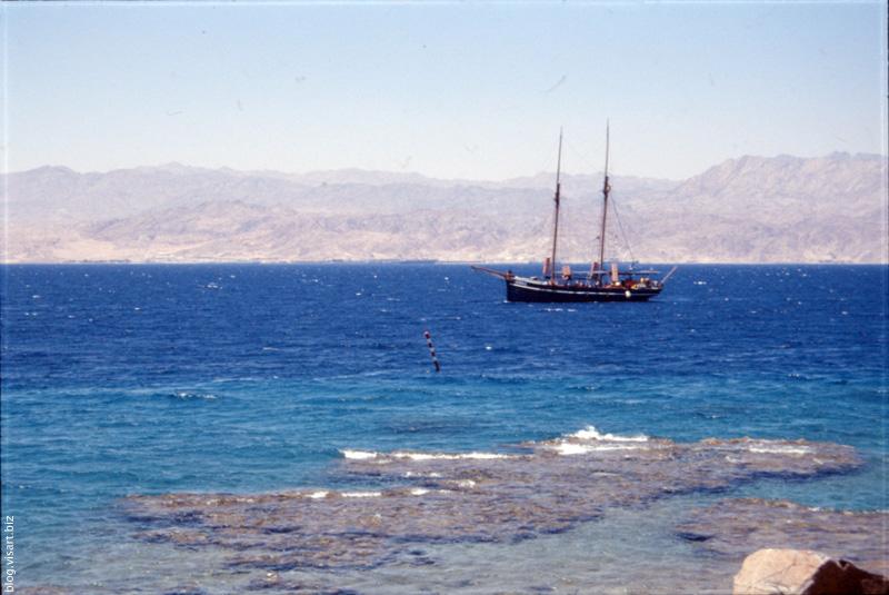 Sinai  #9